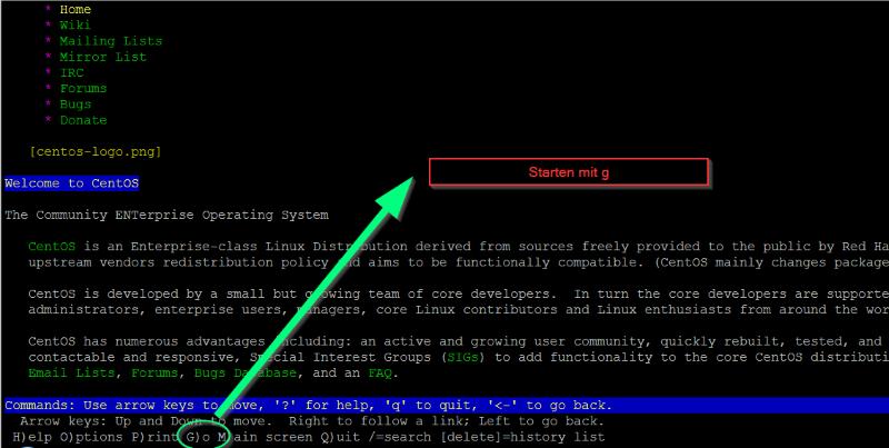 LYNX Browser